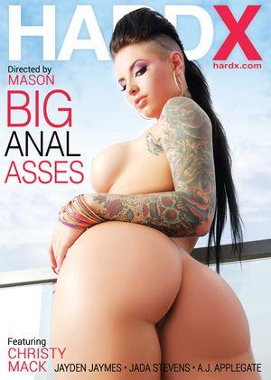 Dvm_Big-Anal-Asses